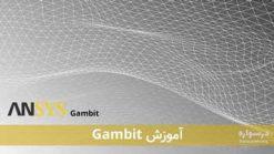 آموزش نرم افزار Gambit