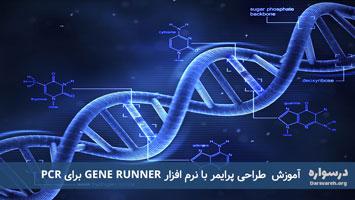 آموزش طراحی پرایمر با نرم افزار GENE RUNNER برای PCR